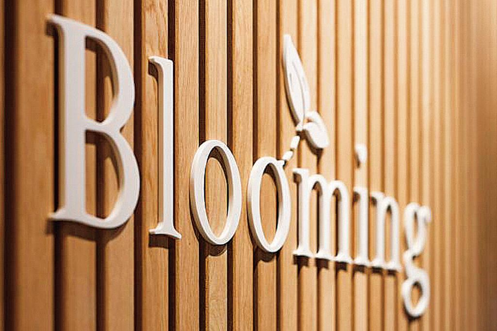 Blooming Haarlem